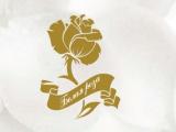 """Благотворительный медицинский центр """"Белая роза"""" (Иваново)"""